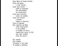Carta a Vinicius (3/8)