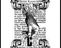 Corporis christi (4/15)