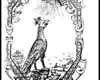 Emblemas (11/11)