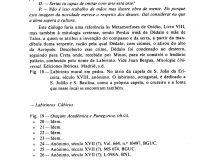 Notas sobre Labirintos de Letras (2/2)