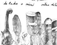 Electrografia 2 (22/77)