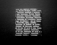 AH_LiHonorAna_Obgesto (6/12)