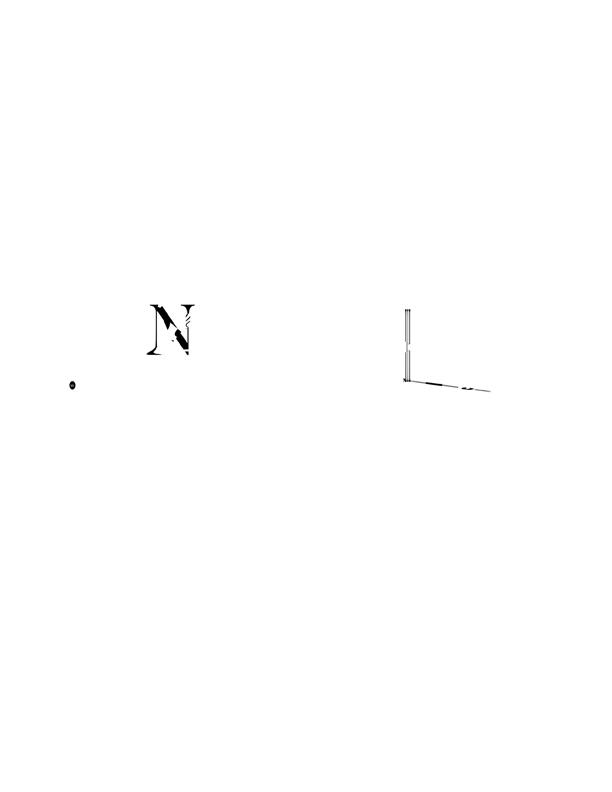 bruno-neiva nuisance-series capa