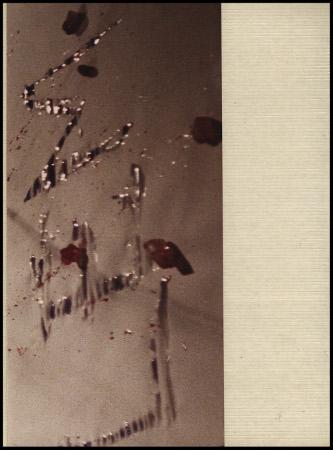 grs lembromeperfeitamentecomotudocomecou 1988 p11