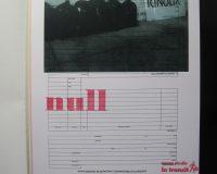 bureaucrazy (16/33)