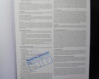 bureaucrazy (5/39)