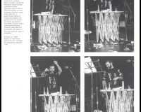 Formas da performance (9/33)