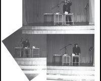 Formas da performance (13/33)