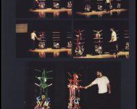 Formas da performance (23/33)