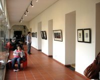 Exposição na Biblioteca Municipal António Botto (2/20)