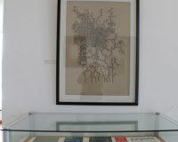 Exposição na Biblioteca Municipal António Botto (13/20)