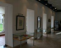 Exposição na Biblioteca Municipal António Botto (16/20)