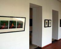 Exposição na Biblioteca Municipal António Botto (18/20)