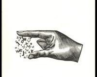 O dedo: poema em 22 andamentos (18/25)