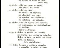 O dedo: poema em 22 andamentos (24/25)