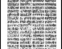 Os olhos que o nosso olhar não vê (51/82)