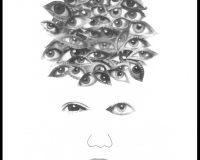Os olhos que o nosso olhar não vê (73/82)