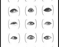 Os olhos que o nosso olhar não vê (74/82)