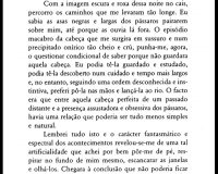 Instalação: romance (18/35)