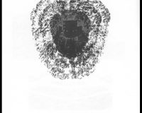 Algorritmos: infopoemas (12/12)