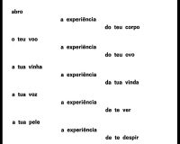 Cara lh amas: poemas eróticos e sarcásticos (1/9)