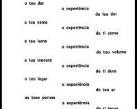Cara lh amas: poemas eróticos e sarcásticos (2/9)