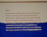 Série 'Oh pus' (2001) (4/8)