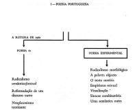 Gráficos e esquemas da PO.EX (3/6)