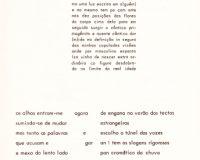 Separata Um, de António Aragão (10/30)