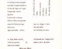 Separata Um, de António Aragão (13/30)