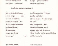 Separata Um, de António Aragão (22/30)