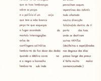 Separata Um, de António Aragão (27/30)
