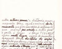 Separata Um, de António Aragão (30/30)
