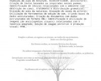 Rui Torres e César Figueiredo, A ciberliteratura (re)velada (17/36)